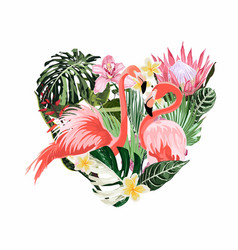 Exotic pink flamingo birds couple heart vector
