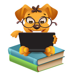 funny yellow dog sitting on books and reading vector image