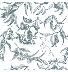 hand drawn pattern eucalyptus succulent flowers vector image