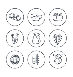 harvest line icons set vector image