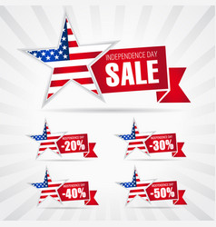 independence day usa sale vector image
