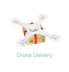 Remote air white modern drone with a box flying vector image