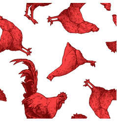 pattern with red hens and cock vector image