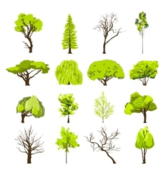 Sketch tree icons set vector image vector image