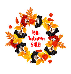 Autumn sale poster of leaf fall or berry vector