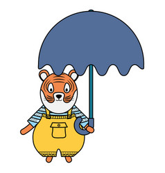 Cute tiger with umbrella character vector