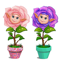 Flowers with human face and drops on leaves in pot vector