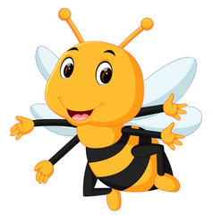 Honey bee on a white background vector