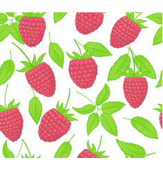 raspberry seamless patterns endless ornament of vector image
