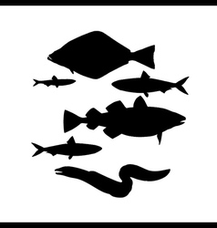 silhouettes fish set vector image