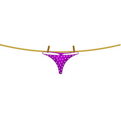 women panties hanging on rope vector image