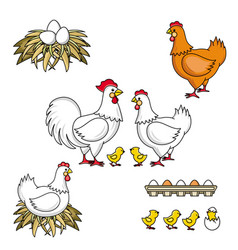 set of rooster hen baby chicken nest and eggs vector image vector image