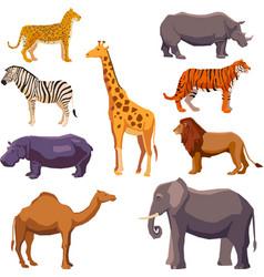 Africa animal decorative set vector image