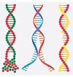Broken DNA chains vector image vector image