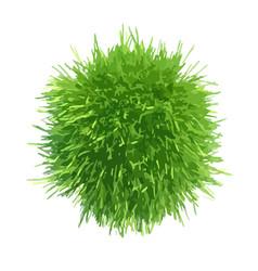 Fresh green grass piece vector