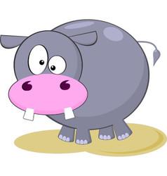Gray Hippopotamus Cartoon vector image