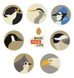 Birds in round frames vector