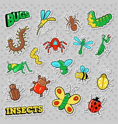 Bugs and insects patches stickers badges vector