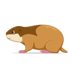 Lemming standing on a white background vector