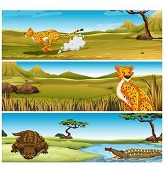 Wild animals in the field vector