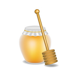 sweet honey and wooden honey dipper vector image vector image