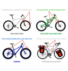 Bicycle types set IV vector