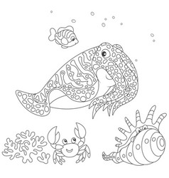 cuttlefish crab shell and fish vector image