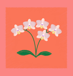 flat shading style flower orhidaceae vector image