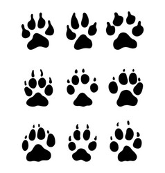 Print of paw of dogs vector