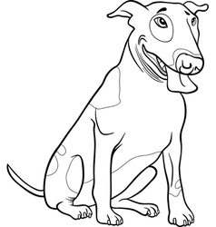 bull terrier dog for coloring book vector image vector image
