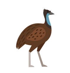 Emu cartoon bird icon vector