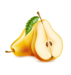 realistic yellow ripe pear healthy food vector image