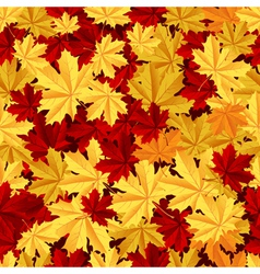 Maple leafs seamless pattern vector image vector image