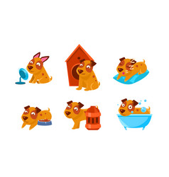 cute little dog character set funny brown puppy vector image