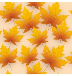 Maple leave fall background vector