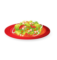 Prawns salad in red dish vector