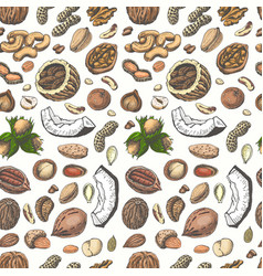 Seamless pattern with colored nuts and seeds vector