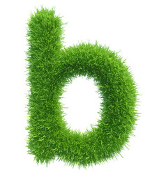 small grass letter b on white background vector image