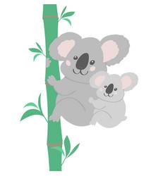koala family vector image