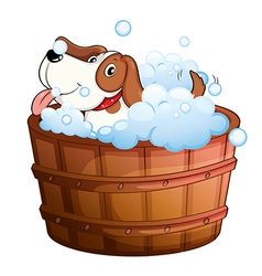 A cute puppy taking a bath vector image
