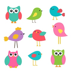 Birds and owls vector