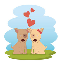 Cute dogs couple on grass vector