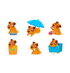 cute little dog character set funny puppy in vector image