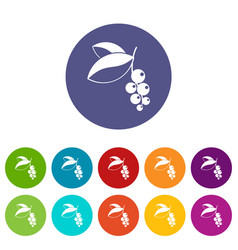 Dogrose berries branch icons set flat vector