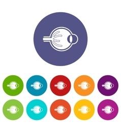 Human eyeball set icons vector image