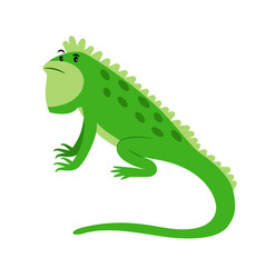 Iguana exotic reptile cartoon icon vector