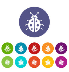 Ladybug icons set color vector