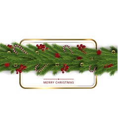 luxury decor christmas tree branches holiday back vector image
