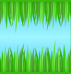 seamless borders with realistic grass element for vector image