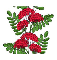 Seamless pattern red rowan tree endless ornament vector